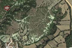 BALIKESİR SAVAŞTEPE SITMAPINARDA 1.800 M2 TARLA