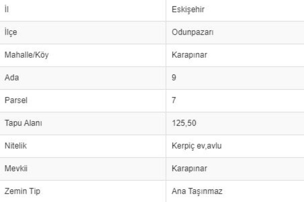 ESKİŞEHİR ODUNPAZARINDA 125 M2 1/3 HİSSELİ KERPİÇ EV